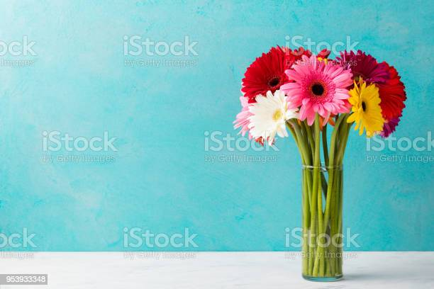 Colorful bunch of gerbera flowers in a glass vase blue background picture id953933348?b=1&k=6&m=953933348&s=612x612&h=d6wb8etuahrgmv0h3nfhochxn c1oilk0rsieebe2dy=