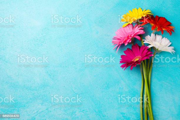 Colorful bunch of gerbera flowers on blue stone background top view picture id689534420?b=1&k=6&m=689534420&s=612x612&h=jhaedoz wqa3fbhs1x7f gq1molvh2jas2epmqzrixk=