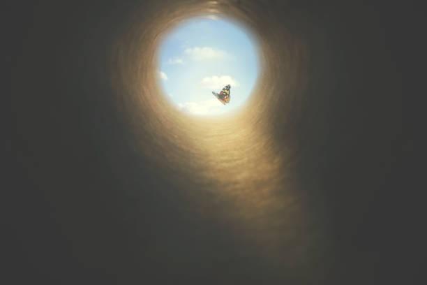 kolorowy motyl znajduje wyjście z ciemnego tunelu, pojęcie wolności - nadzieja zdjęcia i obrazy z banku zdjęć