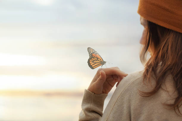 colorful butterfly is laying on a woman's hand stock photo