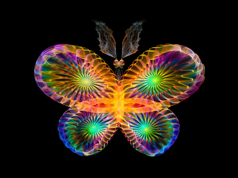 istock Colorful Butterfly 462464357