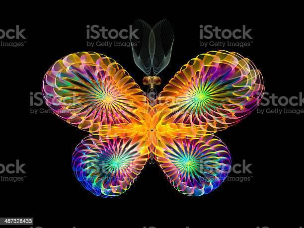 Colorful butterfly picture id487328433?b=1&k=6&m=487328433&s=612x612&h=txdanql7bripu9oekpfe06t srqyuuzr0ohb  41sqw=