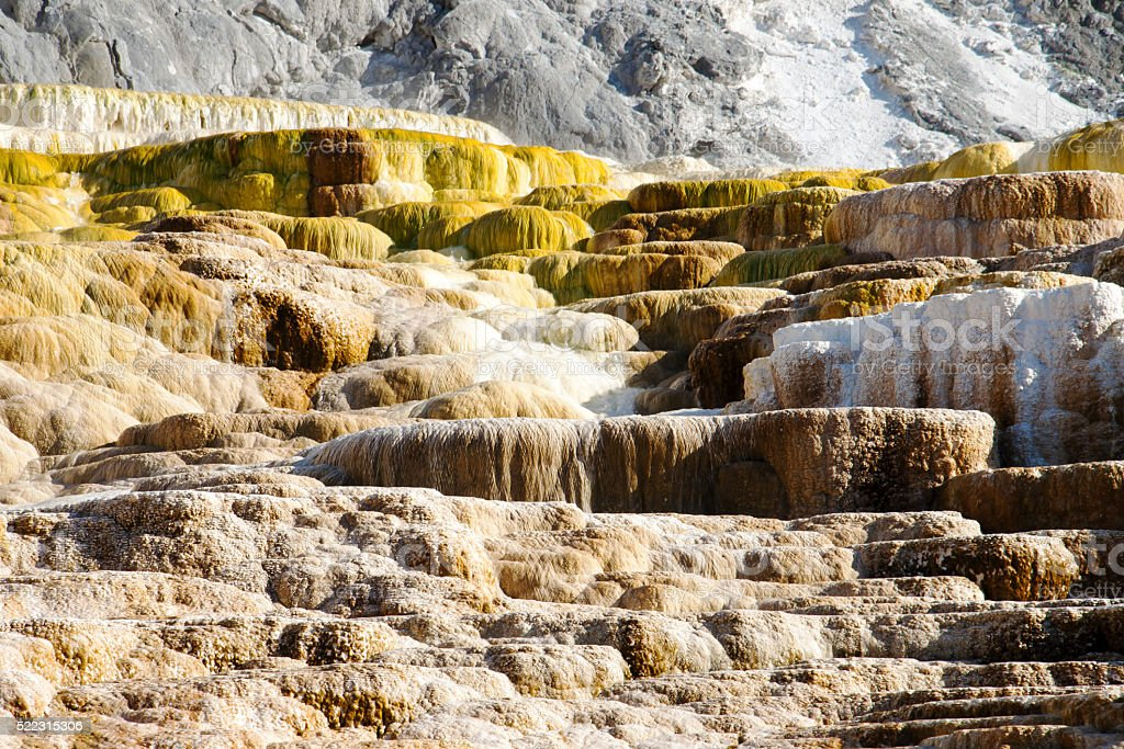 Colorful cascade in Yellowstone national park, Mammoth Hot Springs stock photo