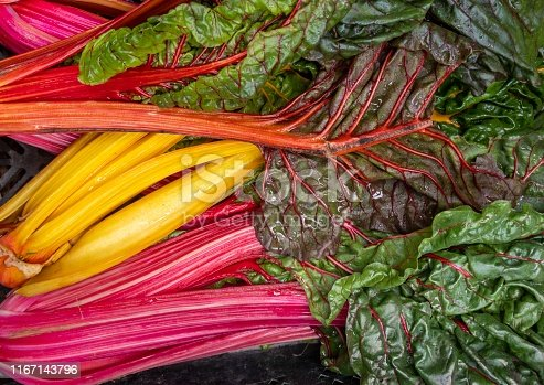 Close shot of colorful and fresh chard.