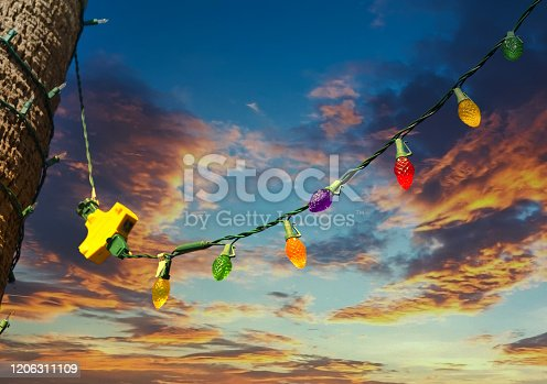 Colorful Christmas LIghts Hanging from Palm Tree Across Clear Blue Sky
