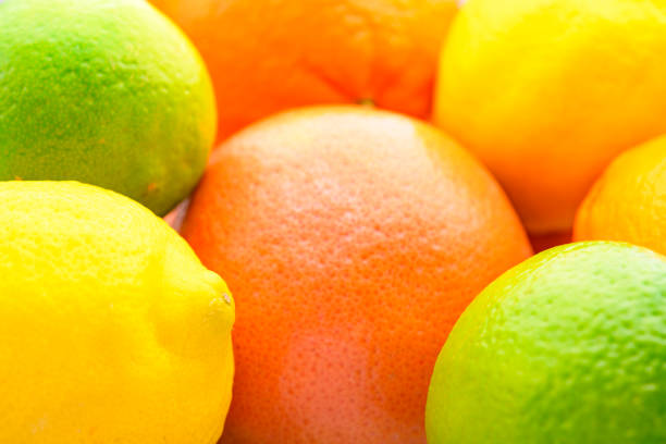 Colorful Citrus fresh fruits including grapefruit, lime, lemon and orange studio shot stock photo