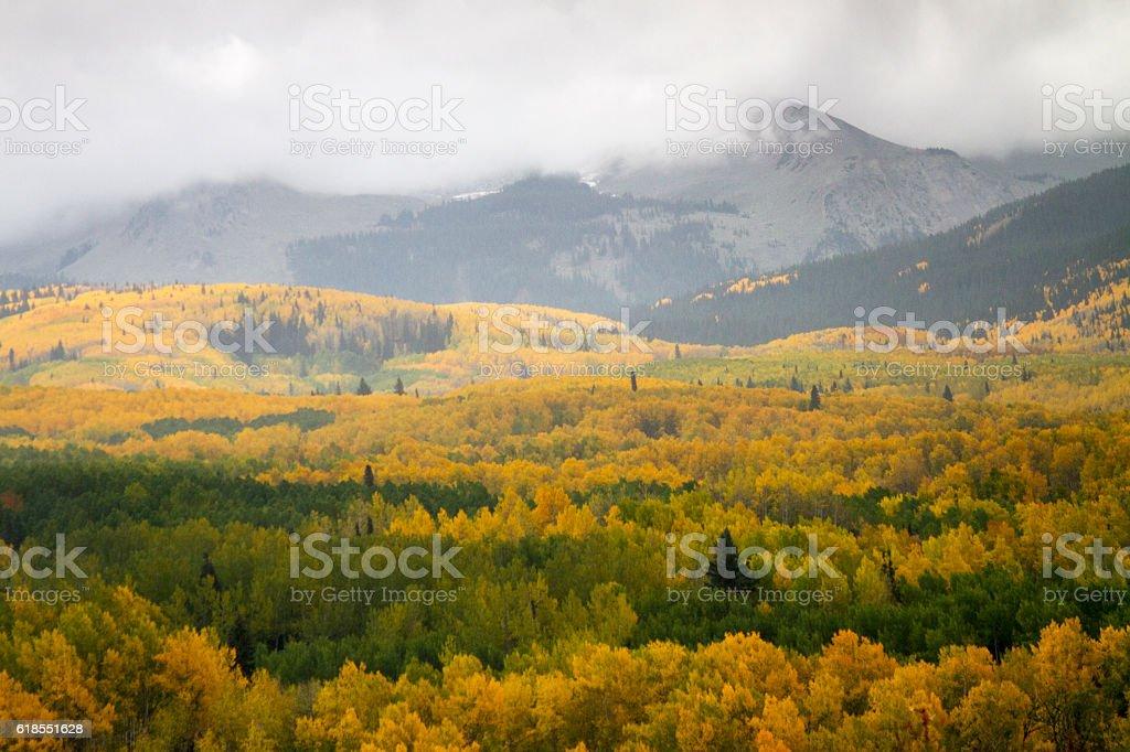 Colorful Colorado Autumn stock photo