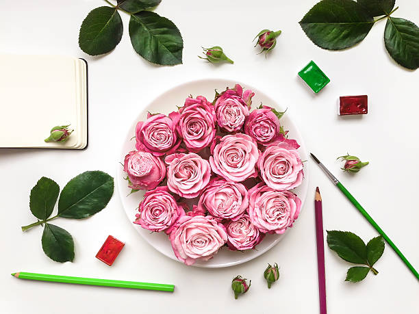 colorful composition with roses, sketchbook and accessories. flat lay - papierrosen basteln stock-fotos und bilder