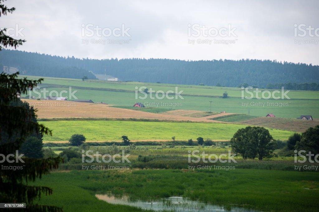colorful countryside view in carpathians photo libre de droits