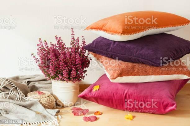 Colorful cushions throw cozy home autumn mood flower picture id1014912206?b=1&k=6&m=1014912206&s=612x612&h=dttqovp7 pl2o3n3lygesoq2h26cln47oxs6ngig9ci=