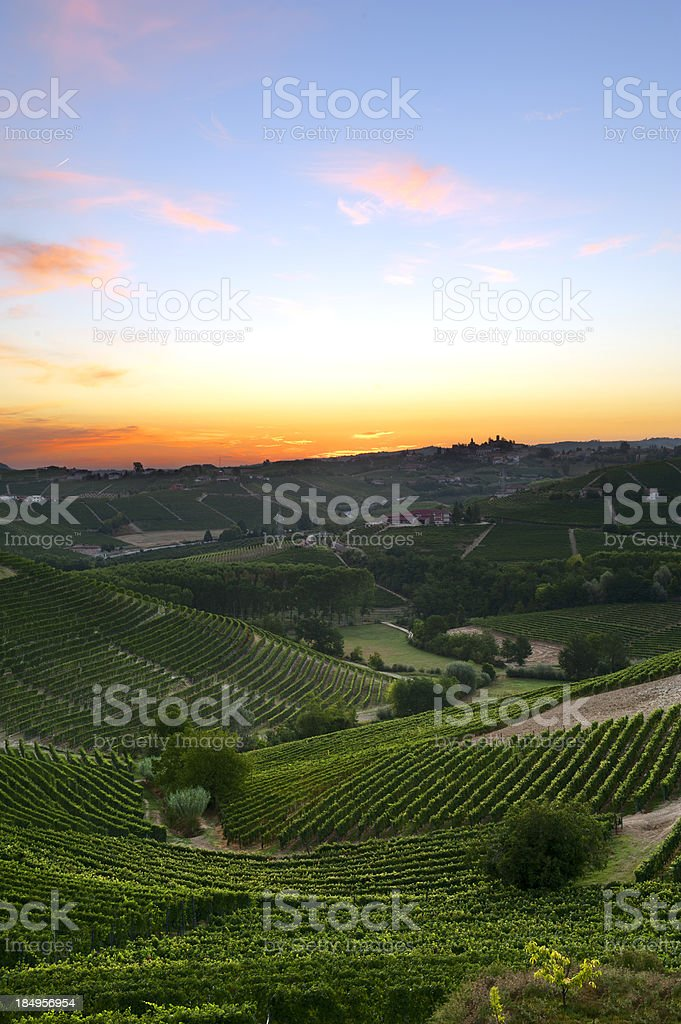 Colorful dawn over the vineyards royalty-free stock photo