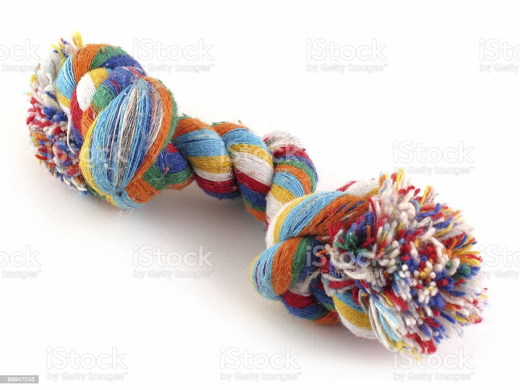 Colorful double knotted dog toy on white backdrop stock photo
