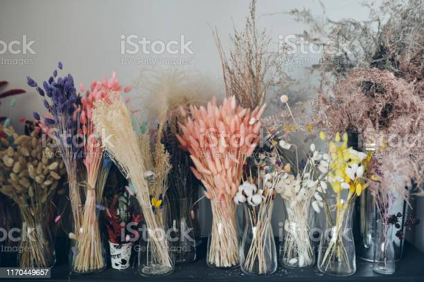 Colorful dried flowers on shelf picture id1170449657?b=1&k=6&m=1170449657&s=612x612&h=uaplfcmh20bwlh3ygqezmuycsa haxzottkzwhcj0jy=