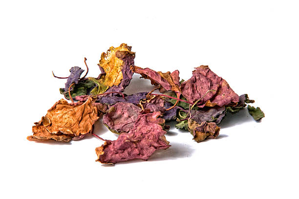 colorful dried patchouli leaves over white stock photo