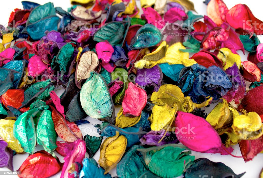colorful dry petals stock photo