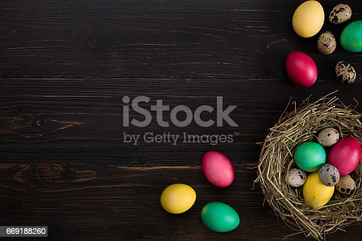 669181586 istock photo Colorful easter egg in nest on dark wood board 669188260