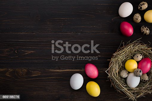 669181586 istock photo Colorful easter egg in nest on dark wood board 669188276