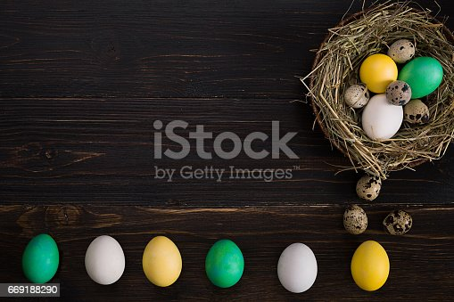 istock Colorful easter egg in nest on dark wood board 669188290