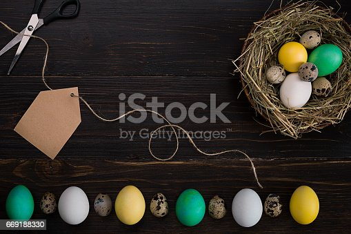 istock Colorful easter egg in nest on dark wood board 669188330