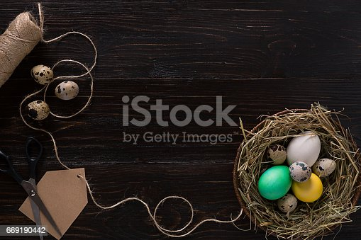 669181586 istock photo Colorful easter egg in nest on dark wood board 669190442