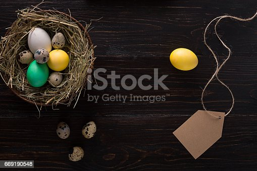 istock Colorful easter egg in nest on dark wood board 669190548