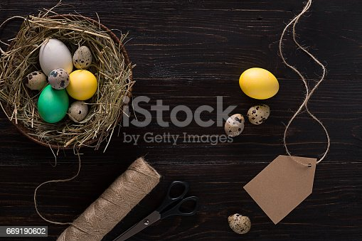 istock Colorful easter egg in nest on dark wood board 669190602