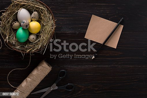 669181586 istock photo Colorful easter egg in nest on dark wood board 669190672