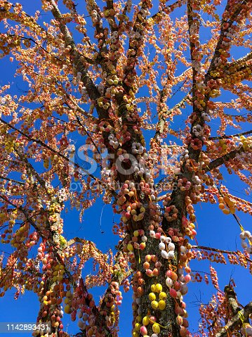 Giant and colorful Easter egg tree