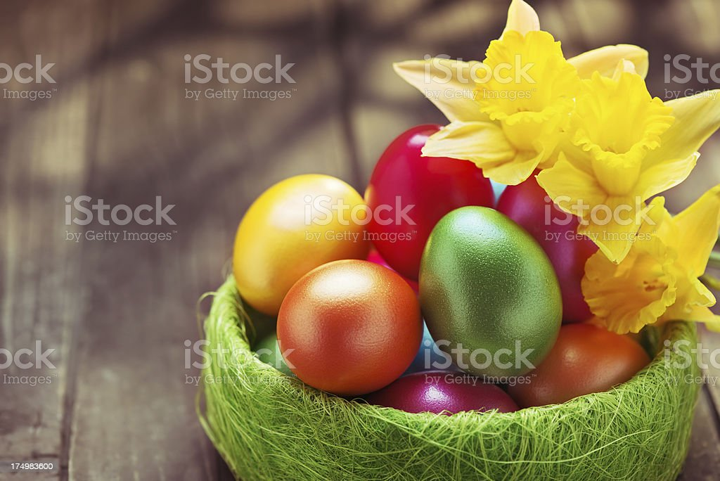 Colorful easter eggs and daffodils on rustic wood background royalty-free stock photo