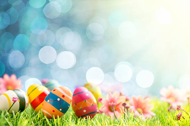Colorful easter eggs and flowers on illuminated background stock photo