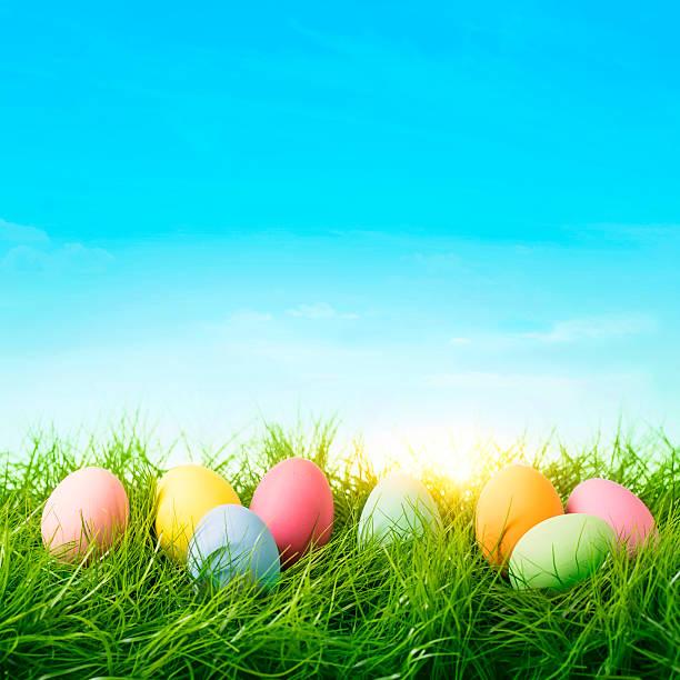 색상화 부활제 에그스 및 토끼 - 부활절 달걀 뉴스 사진 이미지