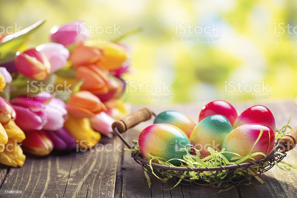 Colorful easter eggs and tulips on green nature background royalty-free stock photo