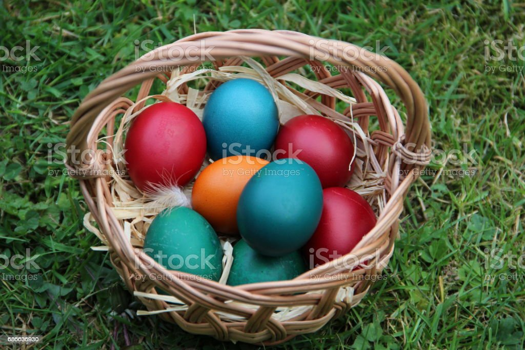 Colorful Easter Eggs in a basket that is on the green grass Стоковые фото Стоковая фотография