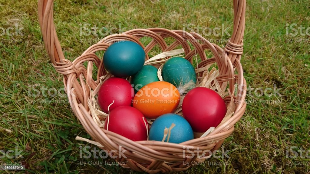 Colorful Easter Eggs in a basket that is on the green grass royalty-free stock photo