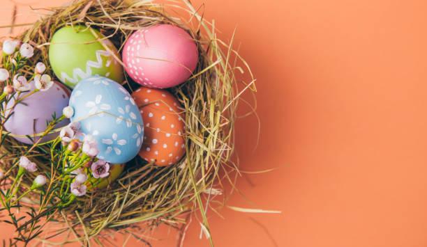 Bunte Ostereier in einem Nest auf einem orangefarbenen Hintergrund – Foto