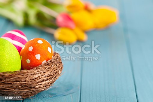 istock Colorful easter eggs in easter nest with tulips on blue wooden background 1134544677