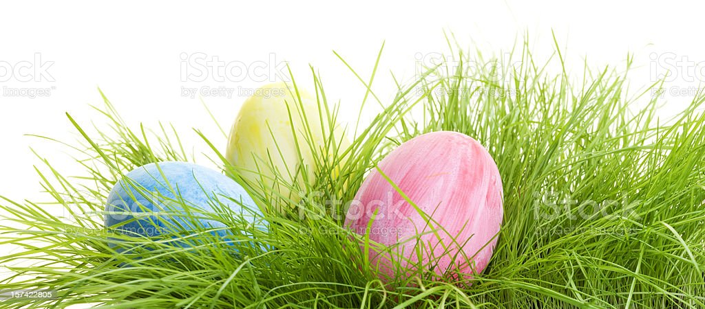 Colorful Easter Eggs in grass royalty-free stock photo