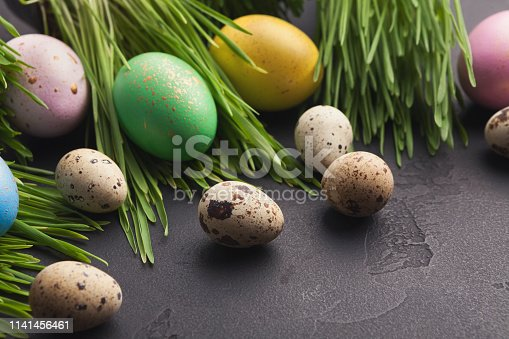 912300146 istock photo Colorful easter eggs in green grass on gray background 1141456461