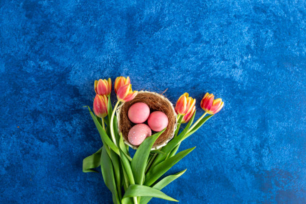 Colorful easter eggs in nest and tulips on deep blue background picture id1215092770?b=1&k=6&m=1215092770&s=612x612&w=0&h=lsnyt43swo48ihhgcbpvjgfuixrgg7wq0yggprnffu8=