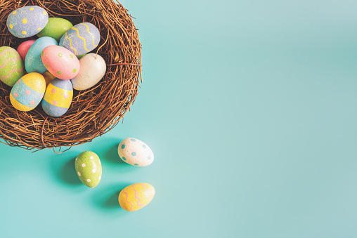 Colorful easter eggs in nest on pastel color background with space.