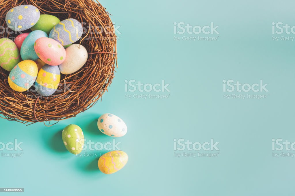 Colorful easter eggs in nest on pastel color background with space. stock photo