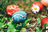 colorful easter eggs in the garden