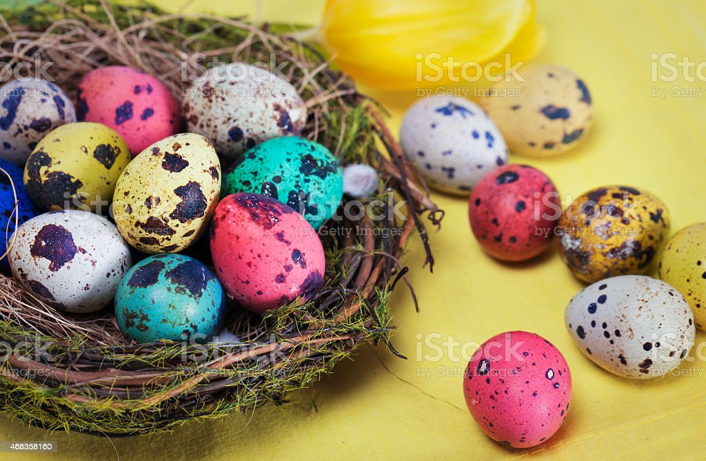Colorful easter eggs in the nest royalty-free stock photo