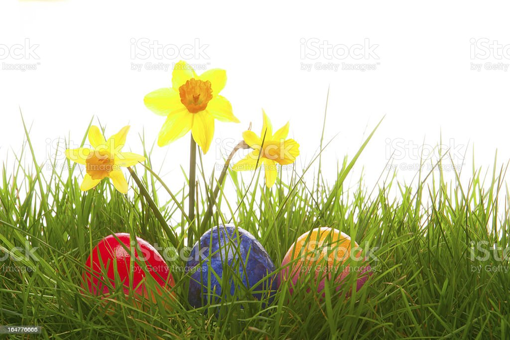 Colorful Easter Eggs. royalty-free stock photo