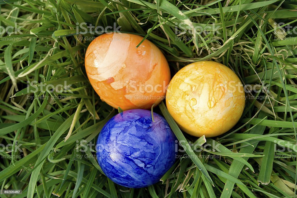 colorful eastereggs in the grass royalty-free stock photo