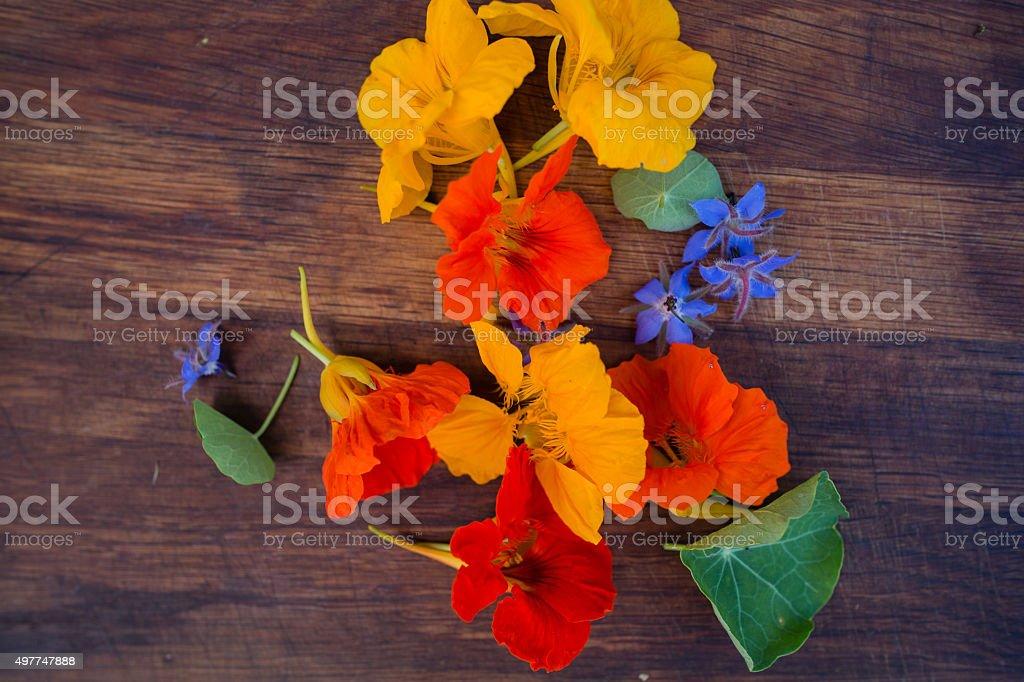 Bunte essbare Blumen auf Holz-Hintergrund – Foto