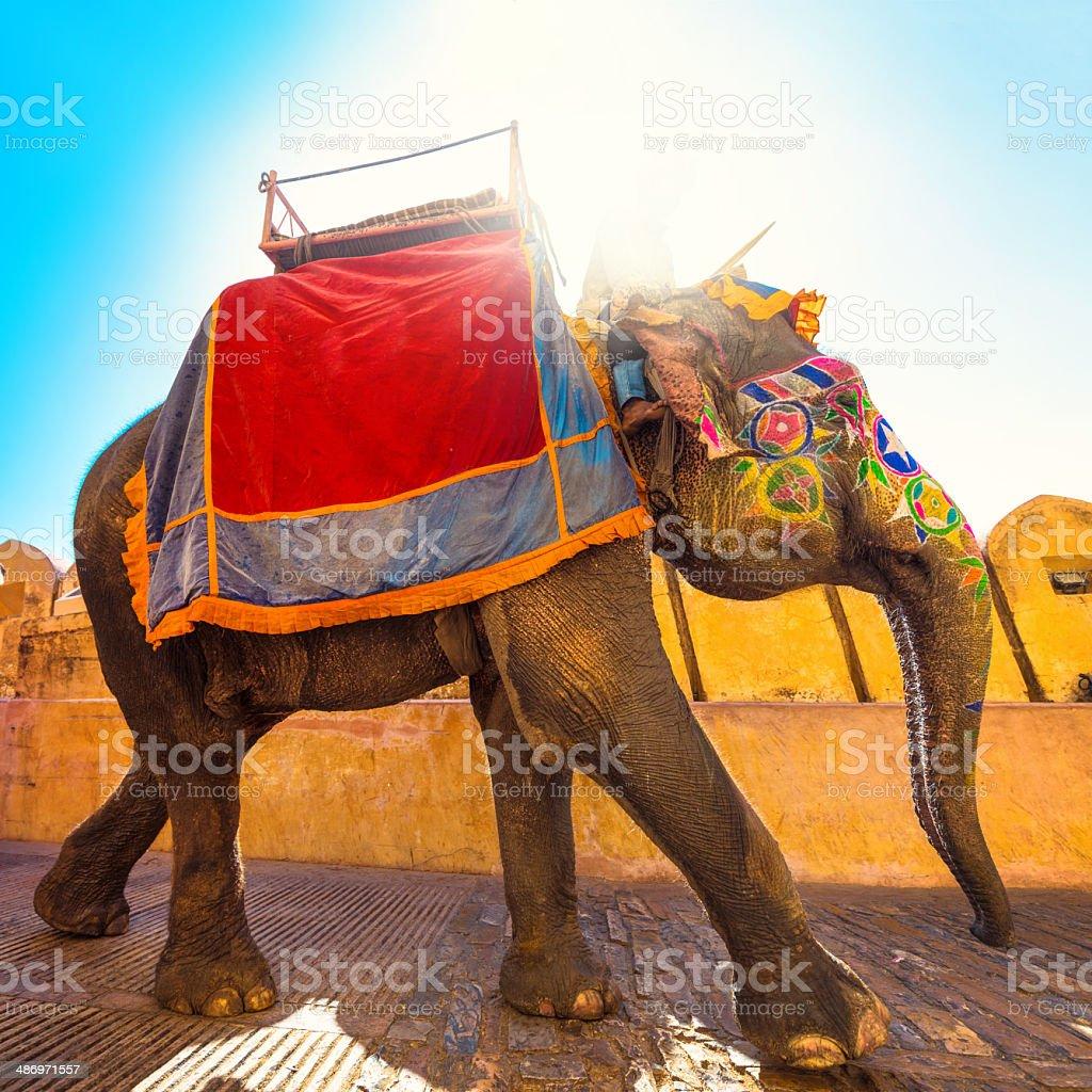 Bunte Elefanten In Indien Stock-Fotografie und mehr Bilder von Amber ...