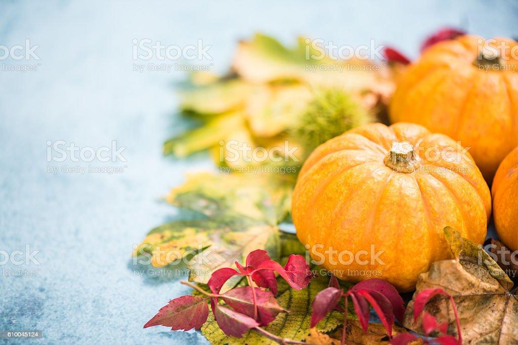 Colorful fall seasonal autumn colors background stock photo