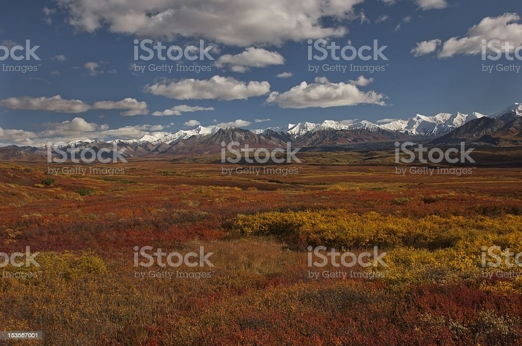 Colorful Fall Tundra Alaska stock photo
