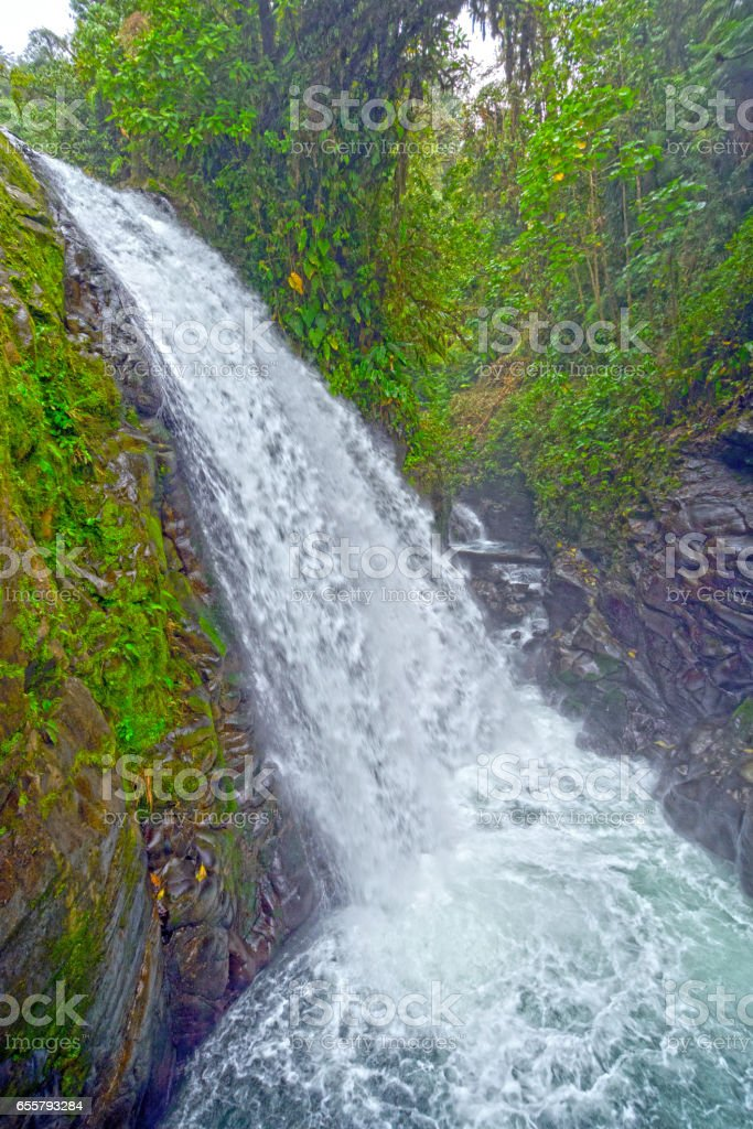 Colorful Falls in the Tropics stock photo
